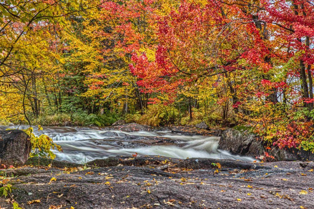 Mes états d'esprit du vendredi, l'automne au Québec.